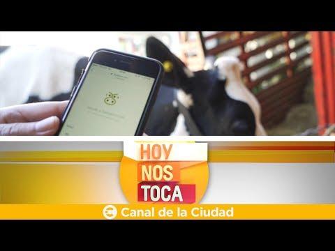 "<h3 class=""list-group-item-title"">""Tamberos.com"", la App para los ganaderos del mundo - Hoy nos toca</h3>"