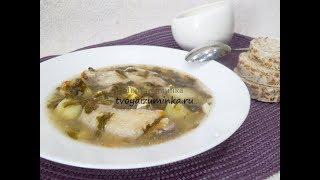 Суп из щавеля: рецепт быстрых, вкусных, витаминных щавелевых щей
