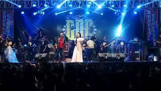 Download lagu Pesta bahagia geri mahesa ft anisa rahma new pallapa GDC PEKALOGAN MP3
