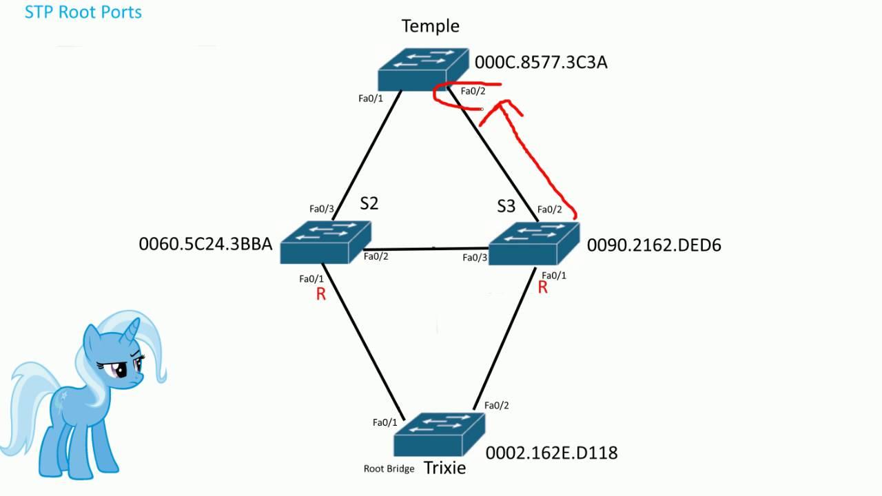 medium resolution of stp root port