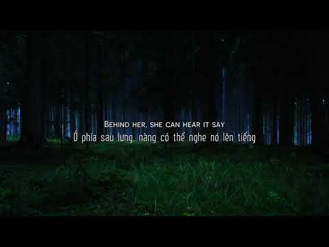 [Vietsub + Lyrics] Lily - Alan Walker; K-391; Emelie Hollow