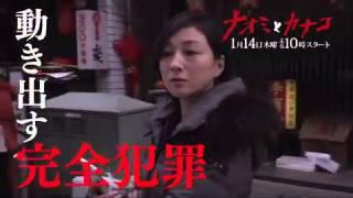 2016/1/14 22:00 スタート 2016年冬ドラマ 「ナオミとカナコ」 http://w...