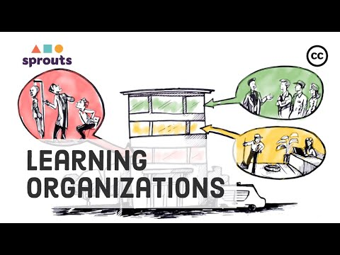 A Learning Organization