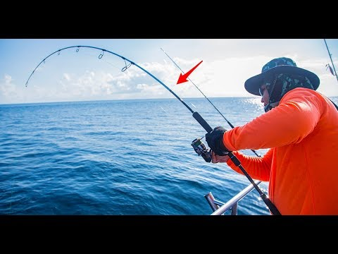 Saltwater Fishing Rods: Must-Know Rod Intel From A Fishing Rod Expert