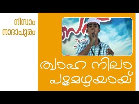 Thwaha nila poomazhayay | Nizam nadapuram | lyrics thwaha thangal
