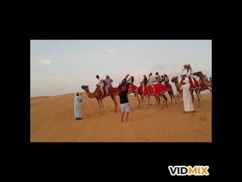 Travco Desert DDCR Dubai