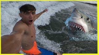 Surfanje sa morskim psima 😂/BALI#2