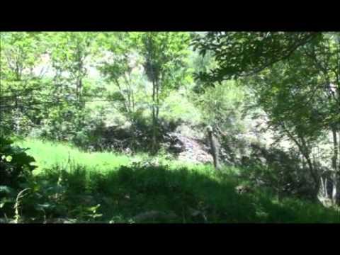partie naturiste camping montagne pyrenees orientales 66 avec piscine biologique  YouTube
