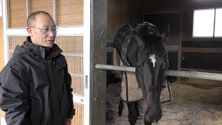 【有馬記念】シャケトラ・角居勝彦調教師 そろそろ眠れる猛虎が目覚めるか