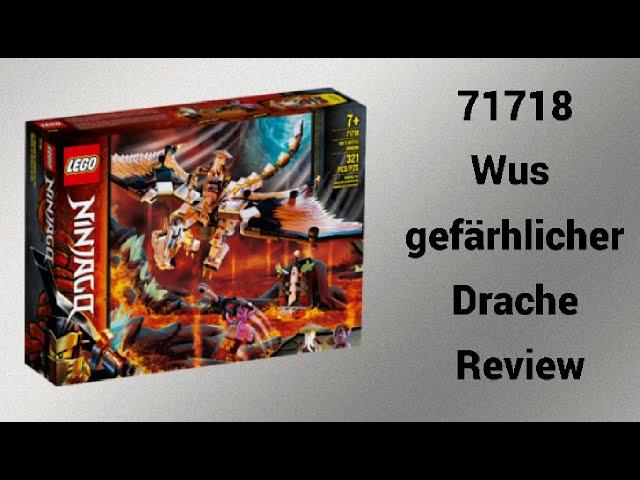 71718 Wus gefährlicher Drache Review   Rpfreund2014