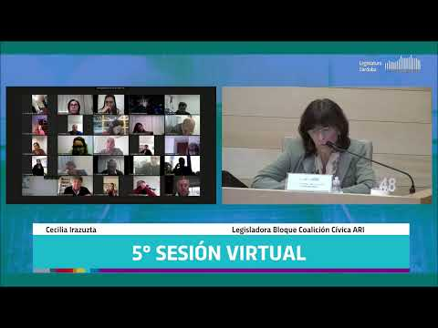 Quinta Sesión Virtual - 142 Período Legislativo