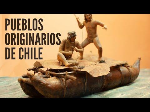Charla: Pueblos originarios