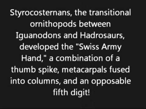 Old Timey Ornithopods