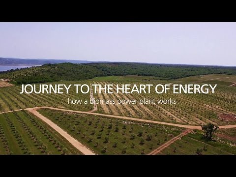 Journey To The Heart Of Energy