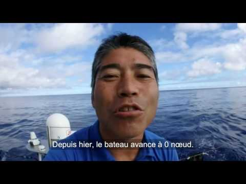 J19 : Kojiro Shiraishi coincé dans la pétole / Vendée Globe