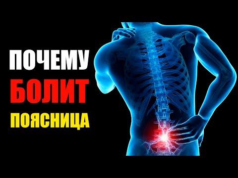 Болит спина в области поясницы после тренировки