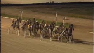 Vidéo de la course PMU CRITERIUM DELS 5 ANYS