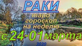 ГОРОСКОП РАКИ С 24 ФЕВРАЛЯ ПО 01 МАРТА.2020