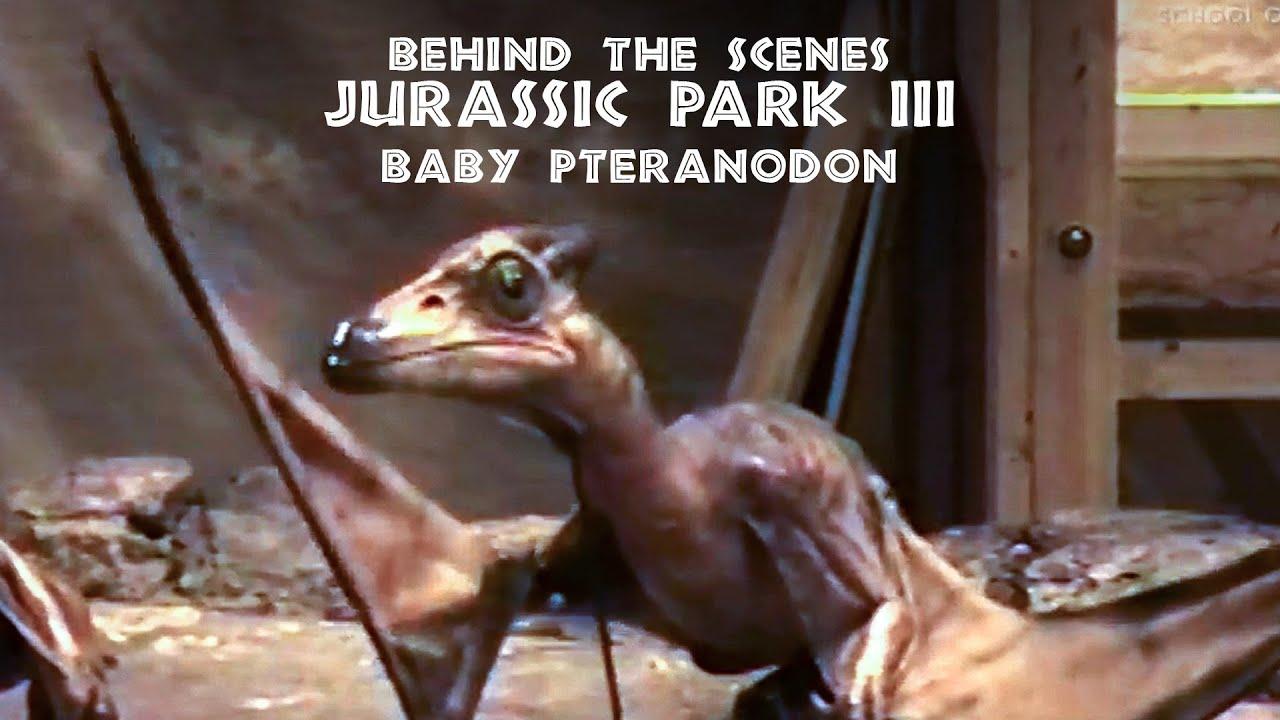 jurassic park iii baby pteranodon puppet rehearsal youtube