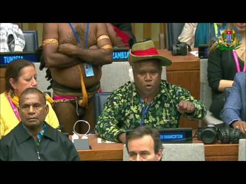 WPLO & WPIA Statement In United Nations Permanent Forum On Indigenous Issues, 24 April - 5 May 2017