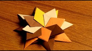 make a awesome star flower with paper