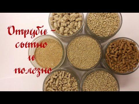 Отруби кормовые для животных оптом. Состав, применение