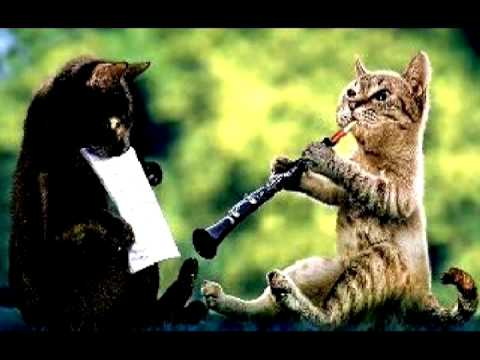 the cat al markel playing the oboecat brian sixby holding