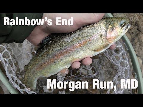 WB - Fly Fishing Rainbow's End, Morgan Run, MD - February '18