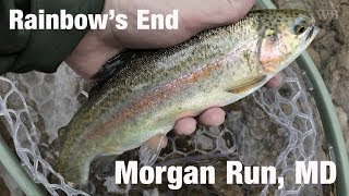 WB - Fly Fishing Rainbow