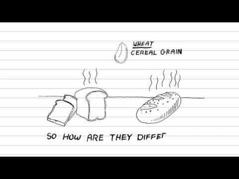 White Bread Vs Whole Wheat (Grain): Whats healthier?, Whats the difference?
