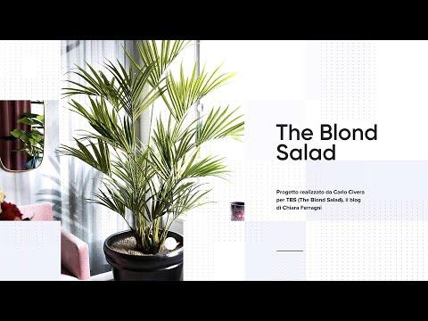 Progetto | The Blond Salad, il blog di Chiara Ferragni – Milano
