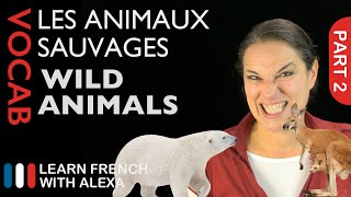 Wild Animals in French Part 2 (basic French vocabulary from Learn French With Alexa)
