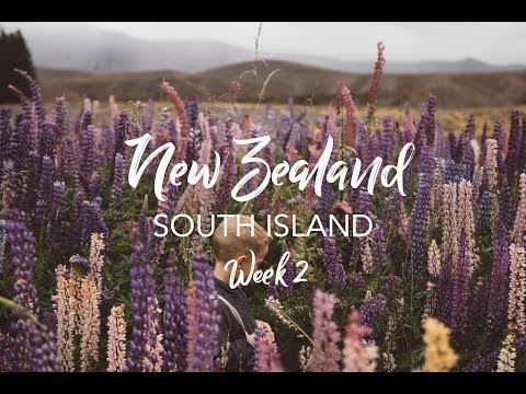 Road Trip Across New Zealand with Kids!!! - South Island // Hiking the Globe with Kids