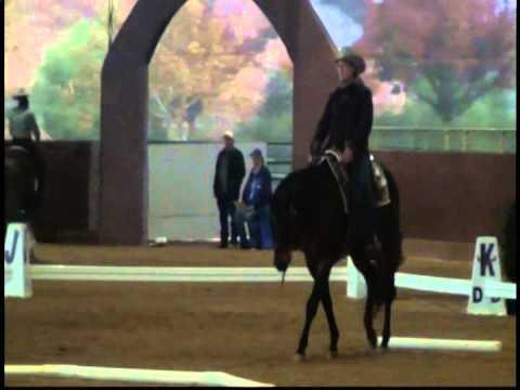 Federal Goods n by Jana Taylor Cowboy Dressage WS