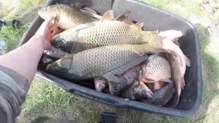 Рыбалка в Астрахани 2017. Домой через настоящую пустыню. Астраханские браконьеры.