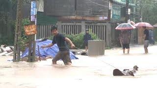 Tin Tức 24h Mới Nhất : 1000 tấn gạo cứu đói cho người dân vùng lũ ở Quảng Ngãi