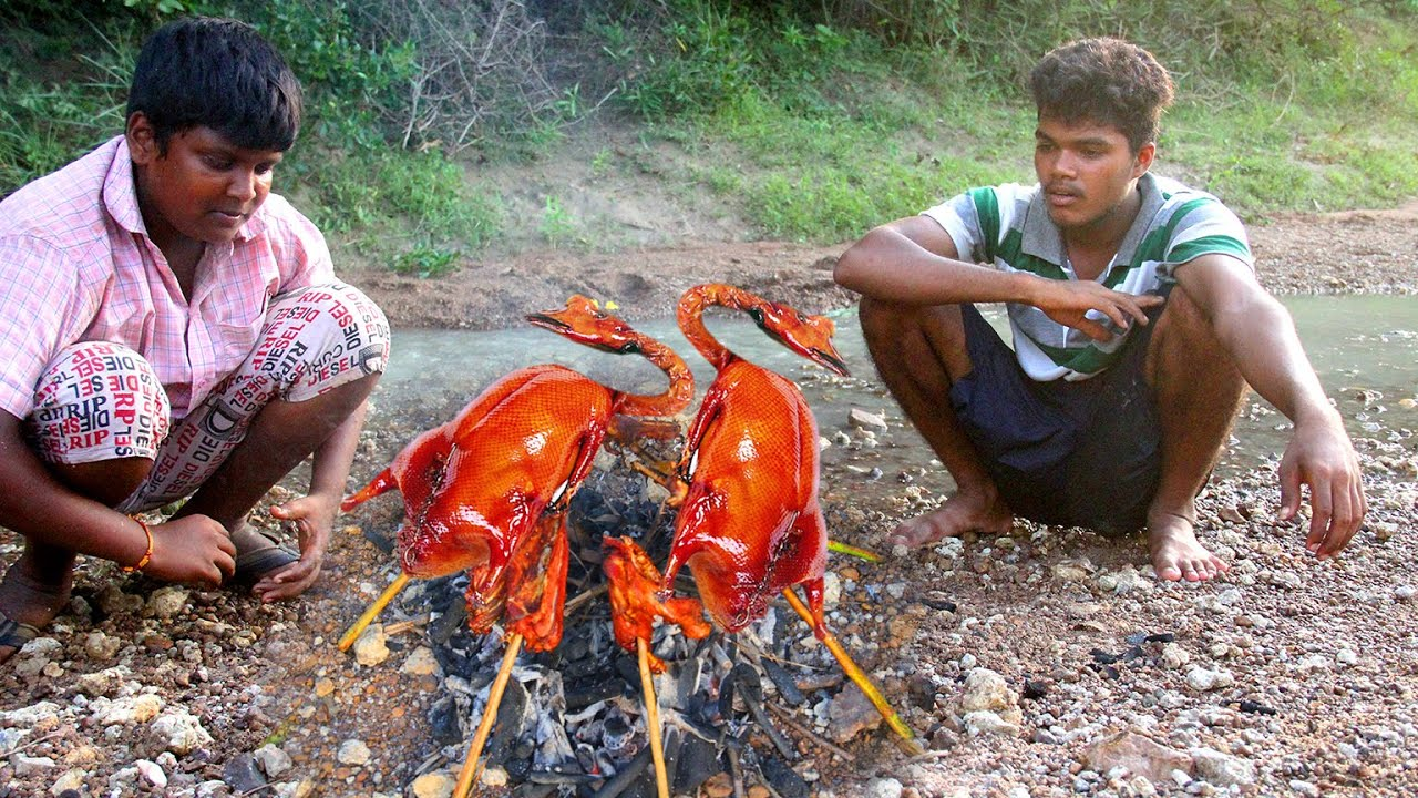 Primitive Technology: Village Land Hunting and Cooking Two Ducks And Eating Delicious Hunter Cooking