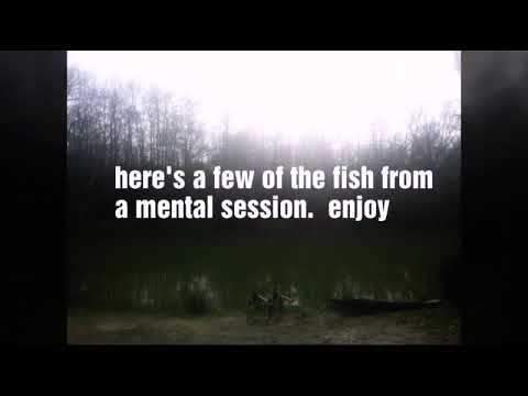 Carpfishing At Frant Lakes  24hr