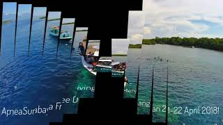Apnea Surabaya Freediving II Pulau Menjangan Bali 21-22 April 2018!