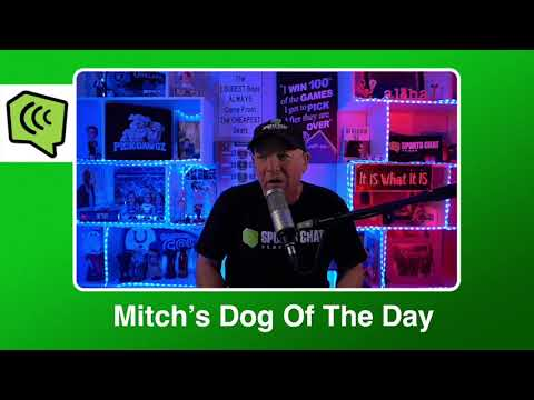Mitch's Dog of the Day 2/26/21: Free College Basketball Pick CBB Picks, Predictions and Betting Tip