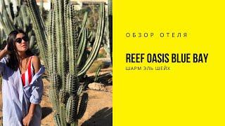 Обзор отеля Reef Oasis Blue Bay Resort Шарм эль шейх Египет