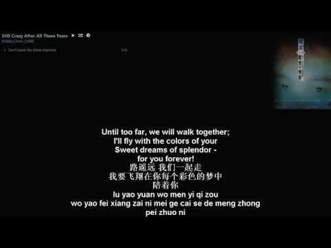 陈升 Bobby Chen Sheng Chinese song - wo bu zai 我不再让你孤单 English translation by SDTZF