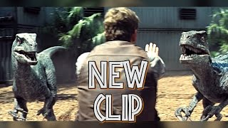 Jurassic World: Chris Pratt orders to Blue raptor to stay down