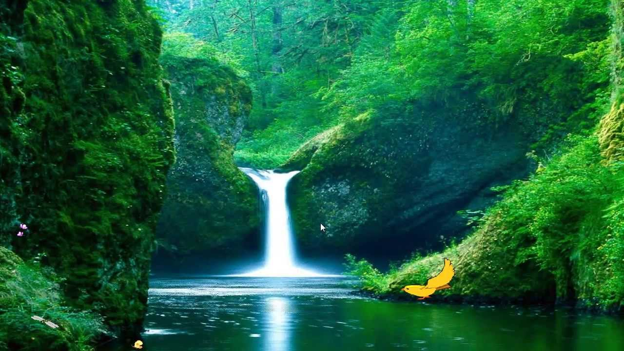 Green Waterfalls Screensaver Youtube