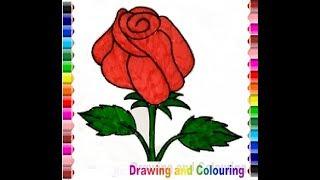 How to Drawing and colouring a Rose (Gambar Bunga Mawar)