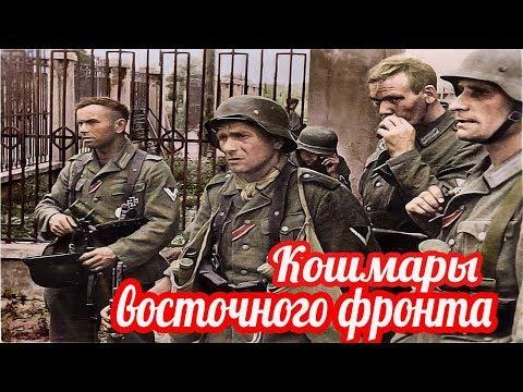 Русский достал аккордеон