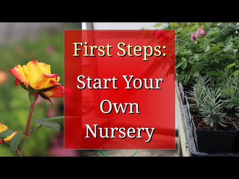First Steps To Start A Plant Nursery