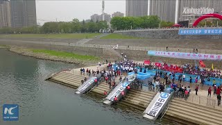 Baixar 700 Chinese sturgeon released into China's longest river