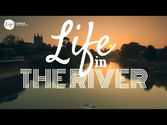 Life in the river