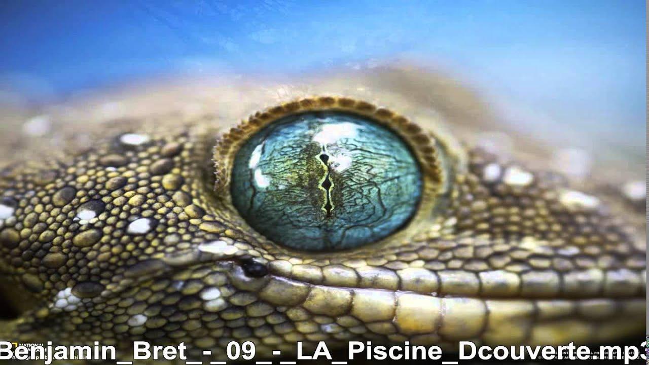 Download Benjamin Bret     LA Piscine Dcouverte